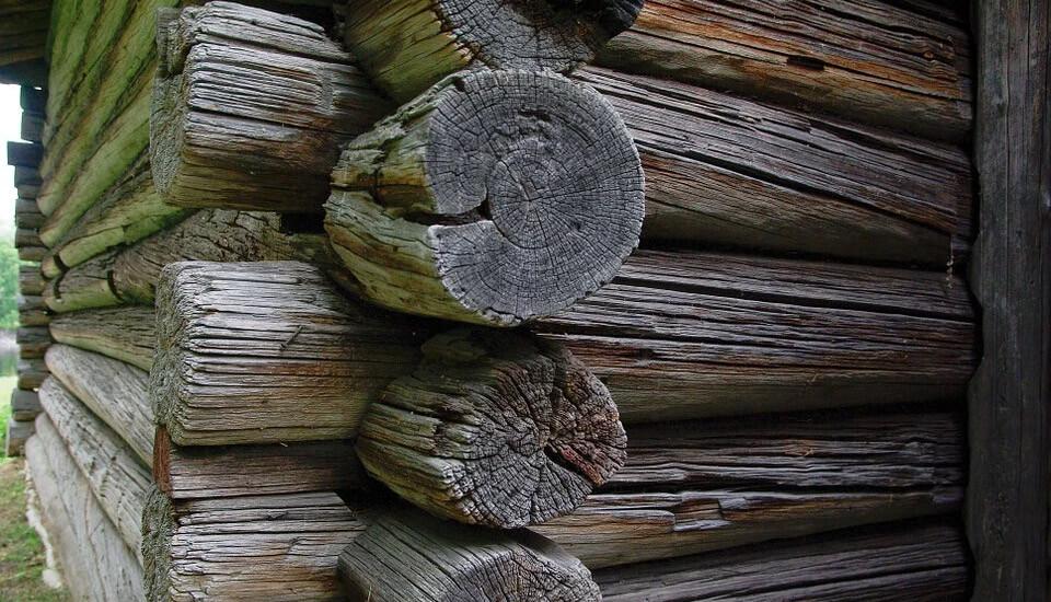 Tout savoir sur la maison en rondin de bois canadienne